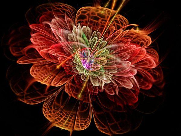 Fond ecran a fleur for Ecran graphisme